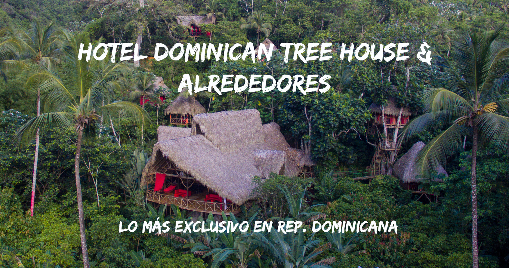 Dominican Tree House Village: Un Hotel Ecológico Exclusivo en Samaná