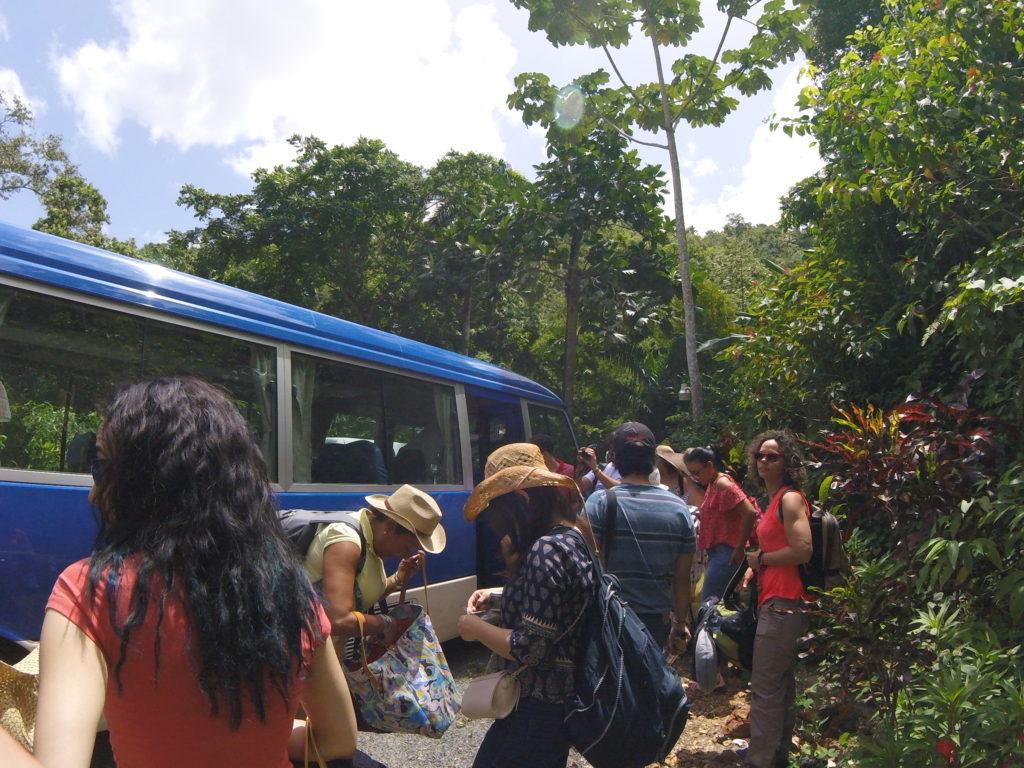Autobus de Aguila Tours