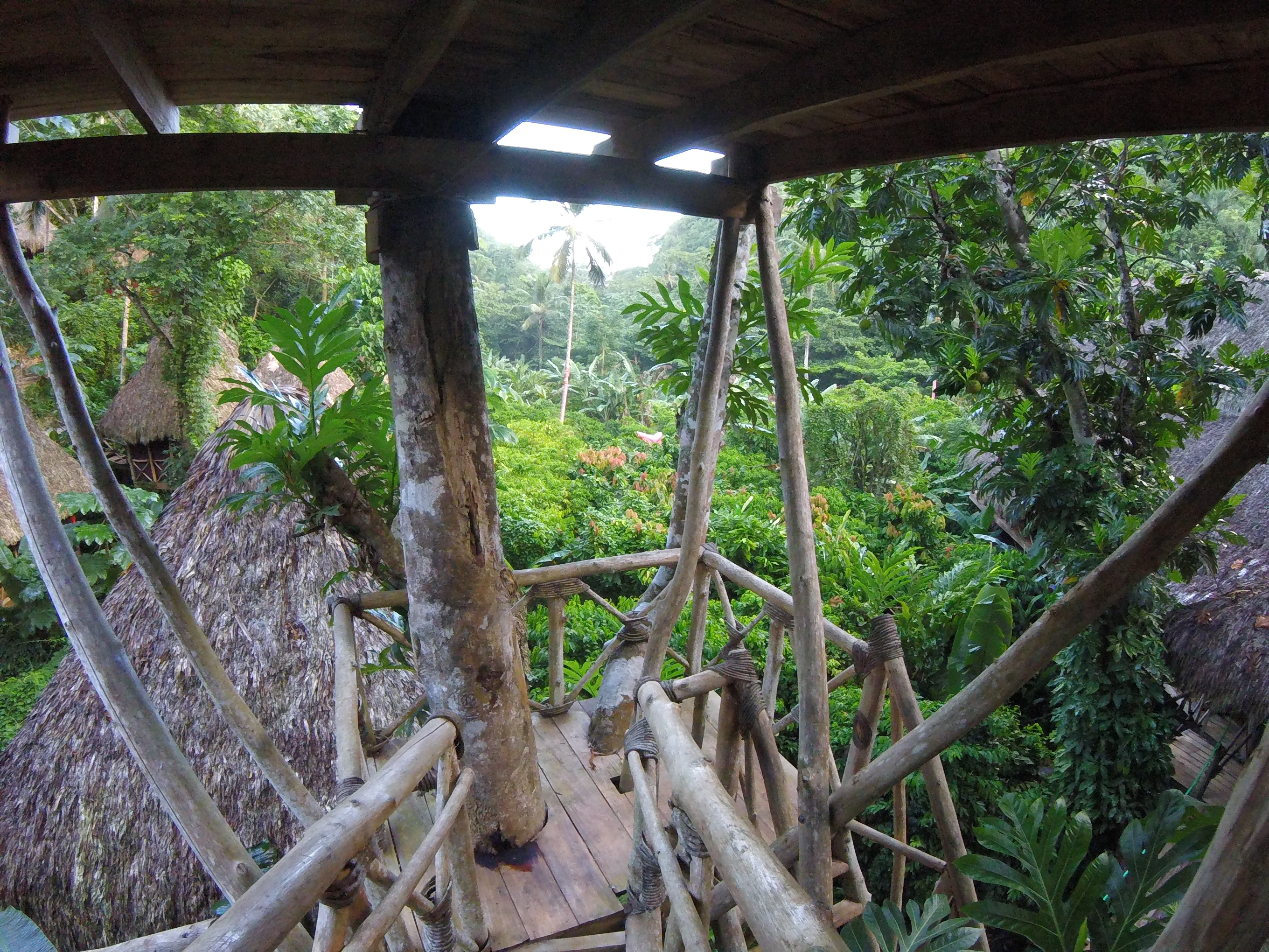 Dominican Tree House Village: A Must Visit Place in Dominican Republic