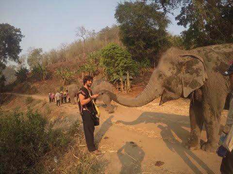 Chiang Mai Tailandia: Mi Experiencia con Los Elefantes
